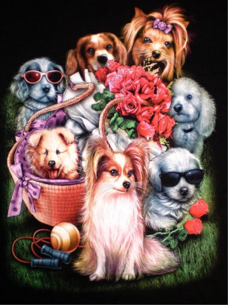 T-Shirt - kleine Hunde - beidseitig farbig bedruckt